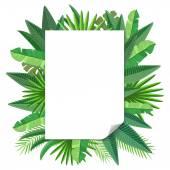 Blank paper Tropical leaves  vector — Vetorial Stock
