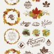 Collection of autumn elements — Stock Vector #60820057