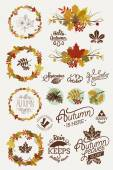 Collection of autumn elements — Stock Vector