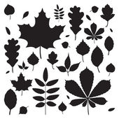 Fall leaves silhouettes — Vector de stock
