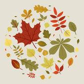 Fall leaves  circle — Stock Vector