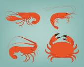 Shrimp, lobster, crab and spiny lobster — Stock Vector