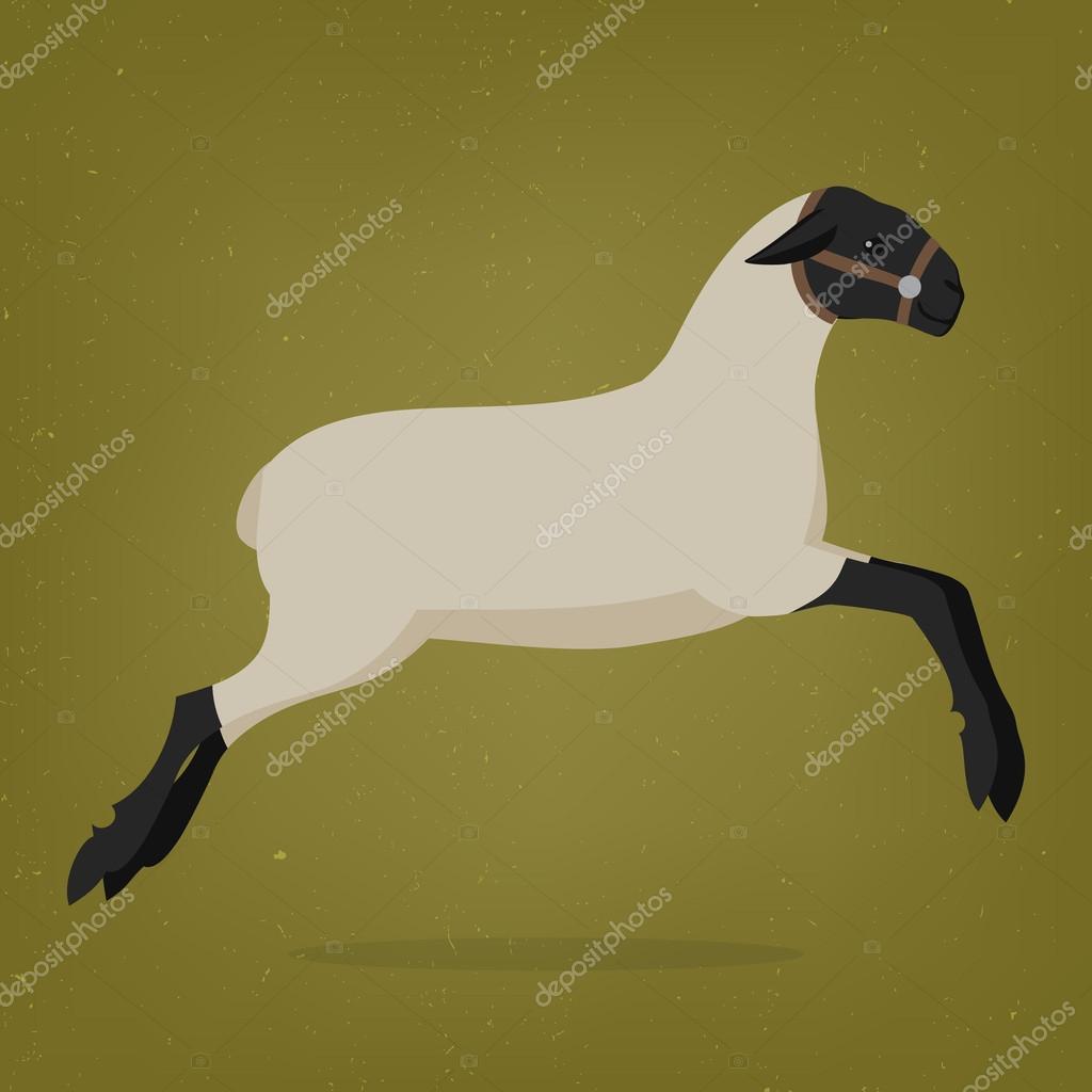 Symbol Sheep Sheep Symbol of The Two