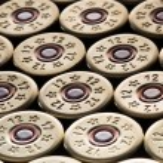 12 gauge shotgun shells used for hunting — Stock Photo #66233735
