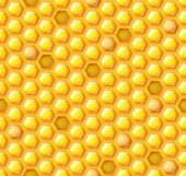 Honey hexagon seamless pattern — 图库矢量图片