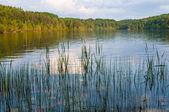Paysage du lac au coucher du soleil — Photo
