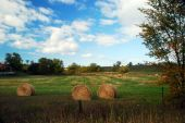Hayroll in a field — Stock Photo