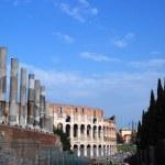 Постер, плакат: Roman Coliseum