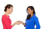 Business women shaking hands — Stock Photo