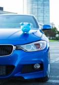 Car with piggy bank on hood — Stock fotografie