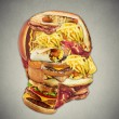 Unhealthy diet health concept fast food in shape of human head — Stock Photo #72198487