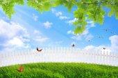 Peaceful backyard  — Stock Photo