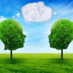 Network cloud communication social media nature — Stock Photo #77082627