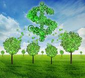 Biznes inwestycji ekonomia drzewo w kształcie jako znak dolara — Zdjęcie stockowe