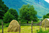 Countryside and haystacks in Plav area — Stock Photo