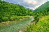 Tara River landscape near Mojkovac — Stock Photo