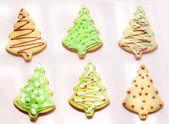Colour Christmas trees cookies — Stock Photo