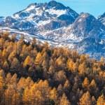 Alp mountains in autumn — Stock Photo #57677339