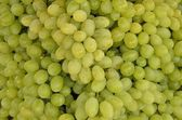 Grapes - vitis vinifera. — Stock Photo