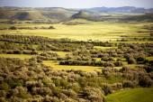 Sardinia. Marmilla Landscape — ストック写真