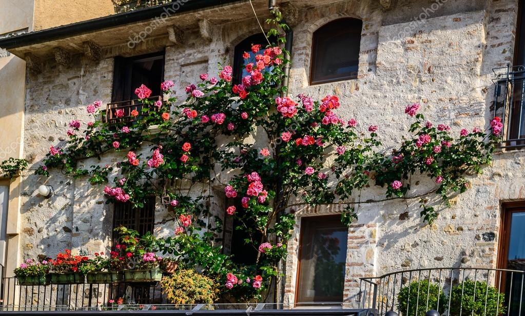 balkon rosen bunt stockfoto 83636410. Black Bedroom Furniture Sets. Home Design Ideas