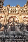 Catedral de málaga, españa — Foto de Stock