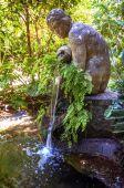 Conception garden, jardin la concepcion in Malaga (Spain)  — Stock Photo