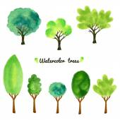Watercolor style vector illustration of a collection of trees, shrubs, and grasses, isolated on white. — Stock Vector