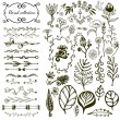 Hand-drawn floral big set with wild flowers, leaves, swirls, border. Vector with nature elements collection for design decoration — Stock Vector #69629589