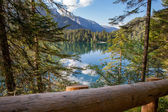 Lago di Tovel (Trentino) — Stock Photo
