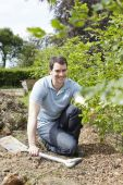 Landscape Gardener Planting Hedge — Stock Photo