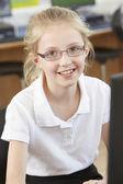 Female Elementary School Pupil In Computer Class — Stok fotoğraf