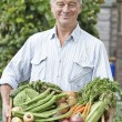 Senior Man On Allotment With Box Of Home Grown Vegetables — Stock Photo #53889813