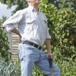 Senior Man Suffering From Back Pain Whilst Gardening — Stock Photo #53889913