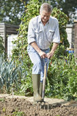 Senior Man Digging Vegetable Patch On Allotment — Stock Photo