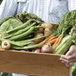 Close Up Of Man On Allotment With Box Of Home Grown Vegetables — Stock Photo #62720359