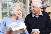 Smiling Senior Couple Reviewing Home Finances — Stock Photo