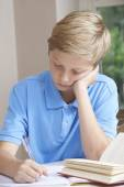 Boy At Home Finding Homework Difficult — Stock Photo