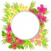 Tropical flowers Plumeria and Hibiscus. Background with place for text. Vector illustration — Stock Vector
