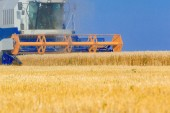 Combine harvester working  — Stock Photo