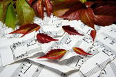 Melody of autumn. Autumn leaves on a torn notes. — Stock Photo