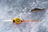 The rod for winter fishing lies near a hole — Foto de Stock