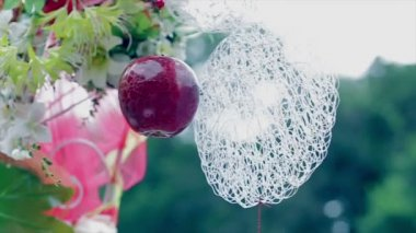 Wedding decoration, red apple, white laces — Stock Video