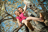Cute little girl playing on tree in early spring — Foto de Stock