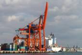 порт — Стоковое фото
