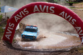 Avis Bosphorus Rally — Foto Stock