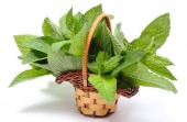 Bunch of fresh green mint in wicker basket on white background — Stock Photo