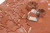 Gingerbread dough for Christmas cookies and cookie cutters — Stock Photo