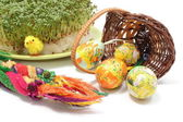 Easter palm and eggs in overturned wicker basket and watercress — Stock Photo