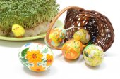 Easter eggs in overturned wicker basket and green cuckooflower — Stock Photo